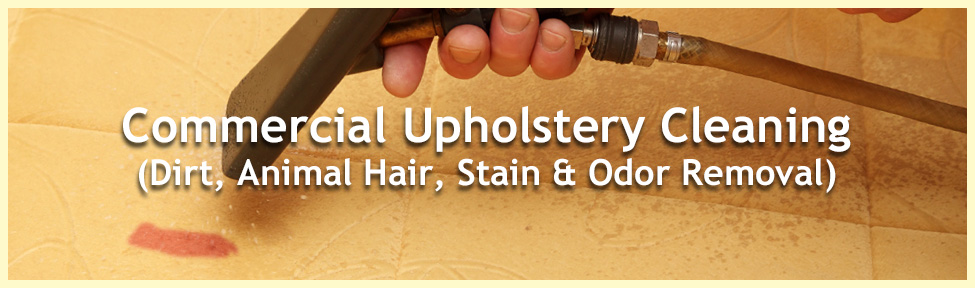 upholstery_cleaning_hair_stain_odor_removal_0